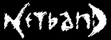 netband01