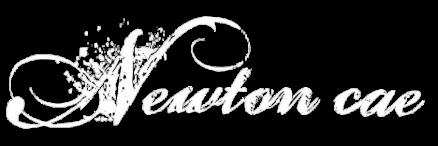 newtoncae01