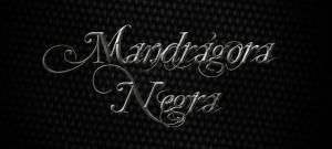 mandragoranegra03